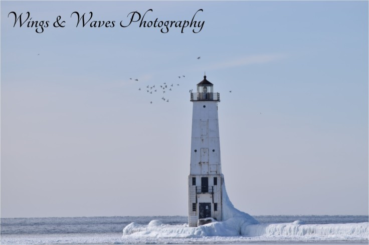 Frankfort Lighthouse with Birds